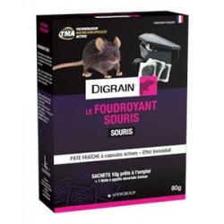 LE FOUDROYANT SOURIS