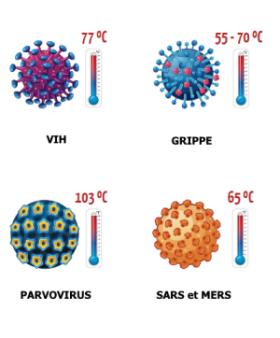 Chaleur et virus